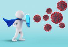 חשיבות מערכת החיסון – ג'ינסנג